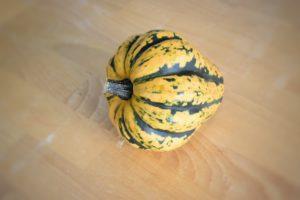 zucca-acorn-2