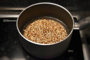 ceci-e-quinoa-8
