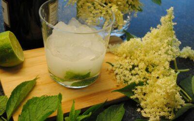 Granita ai fiori di sambuco, prosecco, lime e menta (Frozen Hugo)