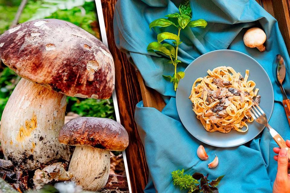 Le delizie d'autunno i funghi da gustare