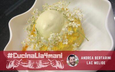 Tartare di cetriolo alla curcuma e sambuco con gelato all'olio d'oliva